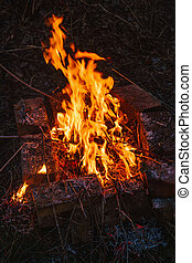 high flame of a bonfire. Fire in night - high flame of...