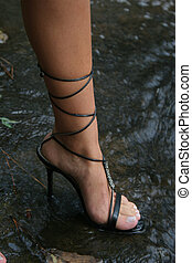 High Heel in water - A black high heel is standing on a...