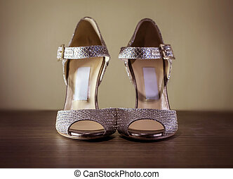 High Heel Silver Luxury Shoes
