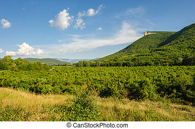 High mountain cliff in Crimea, Ucraine or Russia