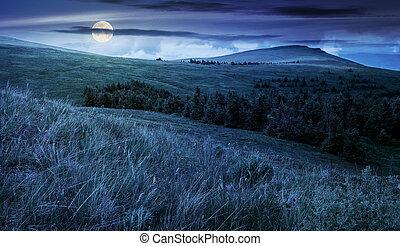 high mountain landscape at night - high mountain idyllic...