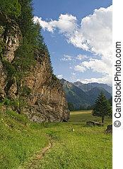 high Pejo valley on summer