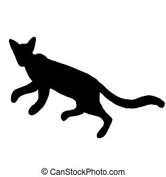 High quality illustration of running cat silhouette
