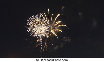 High quality video of new year fireworks colorful fireworks.