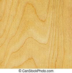 birch wood texture