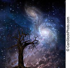 High Resolution Celestial tree