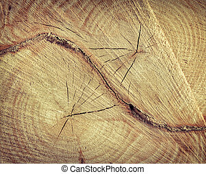 High Resolution Old Natural Wood Textures