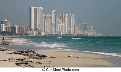 High rise condos on the beach