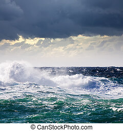 High sea wave during storm