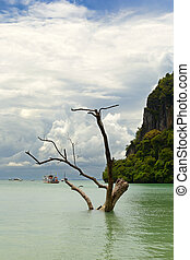 High tide in scenic Railey Bay, Krabi, Southern Thailand.