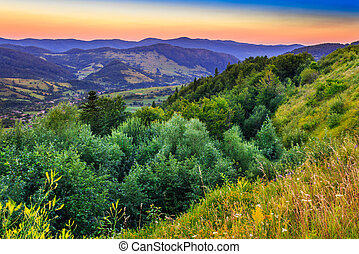 high view - forest on the slopes of high mountains in the...