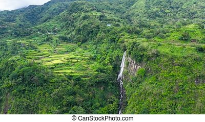 Mountains covered with jungle and a waterfall in the distance, aerial view.