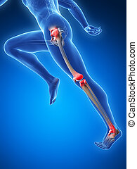 Highlighted - runner joints - 3d rendered illustration -...