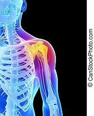 Highlighted - shoulder - 3d rendered illustration - painful...