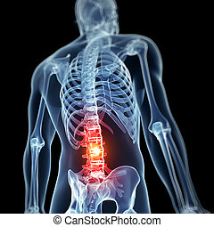 Highlighted spine - 3d rendered illustration - backache