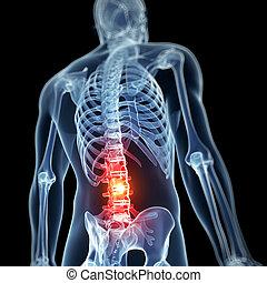 Highlighted spine - 3d rendered illustration - backache