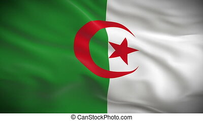 Highly detailed Algerian flag