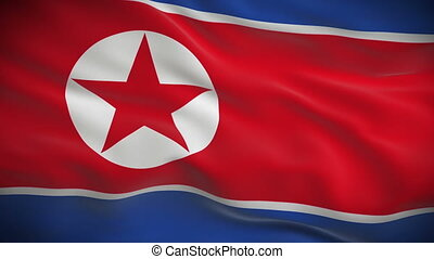 Highly detailed flag of North Korea