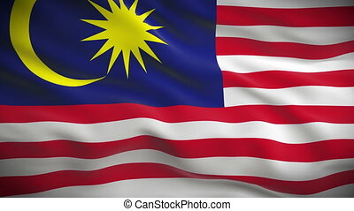 Highly detailed Malaysian flag ripples in the wind. Looped...