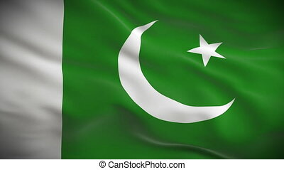 Highly detailed Pakistani flag