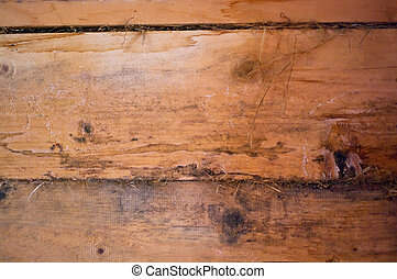 wooden surface - Highly detailed texture of a wooden surface