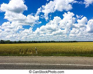 Highway background