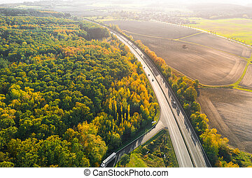 Highway between Autumn forest and cultivated ground with yellow trees at sunset in autumn. Aerial view of the traffic on speedway