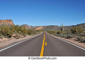 Rural highway through the Arizona desert with lots of cacti and mountains in the background