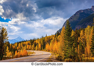 Highway in mountains and autumn forest