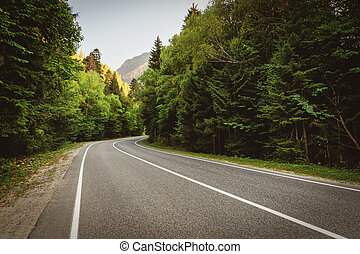 highway in the mountains passes through the forest