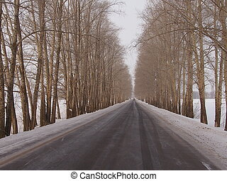 Highway in the winter