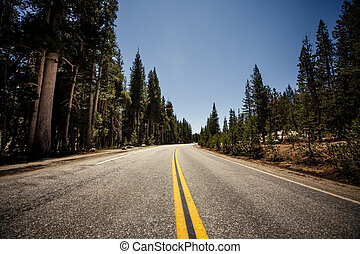 Highway in Yosemite National Park