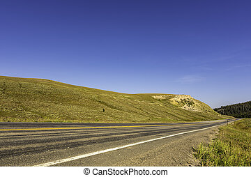 Highway through Alpine Meadow Bighorn National Forest Wyoming USA