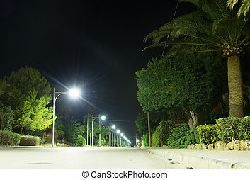 Highway with lanterns at night.