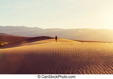 Hike in desert - Hiker in sand desert. Sunrise time.