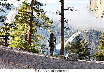 Hike in Yosemite