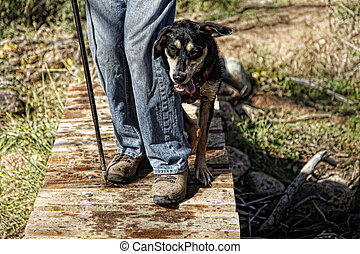 Hiker and Tired Puppy on bridge