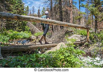 hiker, cruzamento, um, passarela, ligado, a, rastro