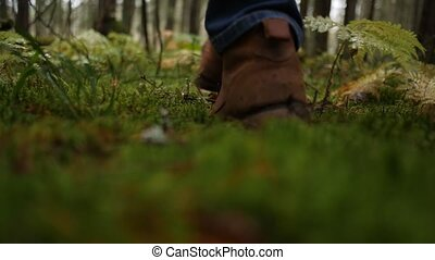Hiker in boots steps on soft green moss in rainy autumn...