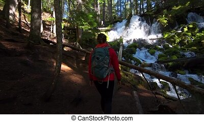 Hiker looking at Clearwater Falls Oregon