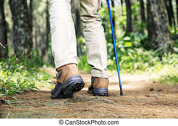 Hiker man with boots and trekking pole walking on the forest
