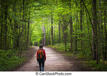 Hiker on forest trail - Young woman hiker with backpack...