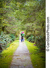 Hiker on lush jungle trail with dirt pathway on Milford Track in New Zealand
