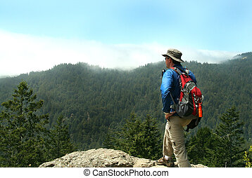 Hiker on Top of a Peak at Muir Woods National Monument