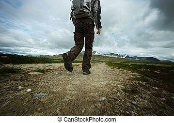 hiker, quadro, andar