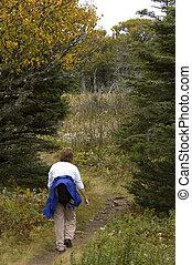 Hiker, Skyline Trail