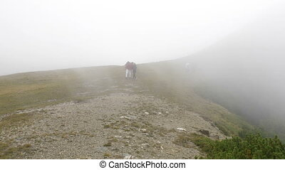 Hiker teenage woman walking to explore mountains attractions...
