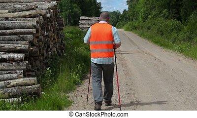 Hiker walking away in forest