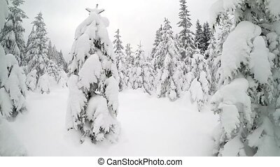 Hiker walking on snowshoes in the winter mountains.