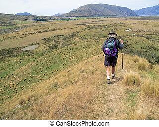 Hiker walking the hills of New Zealand - Elderly walker on...